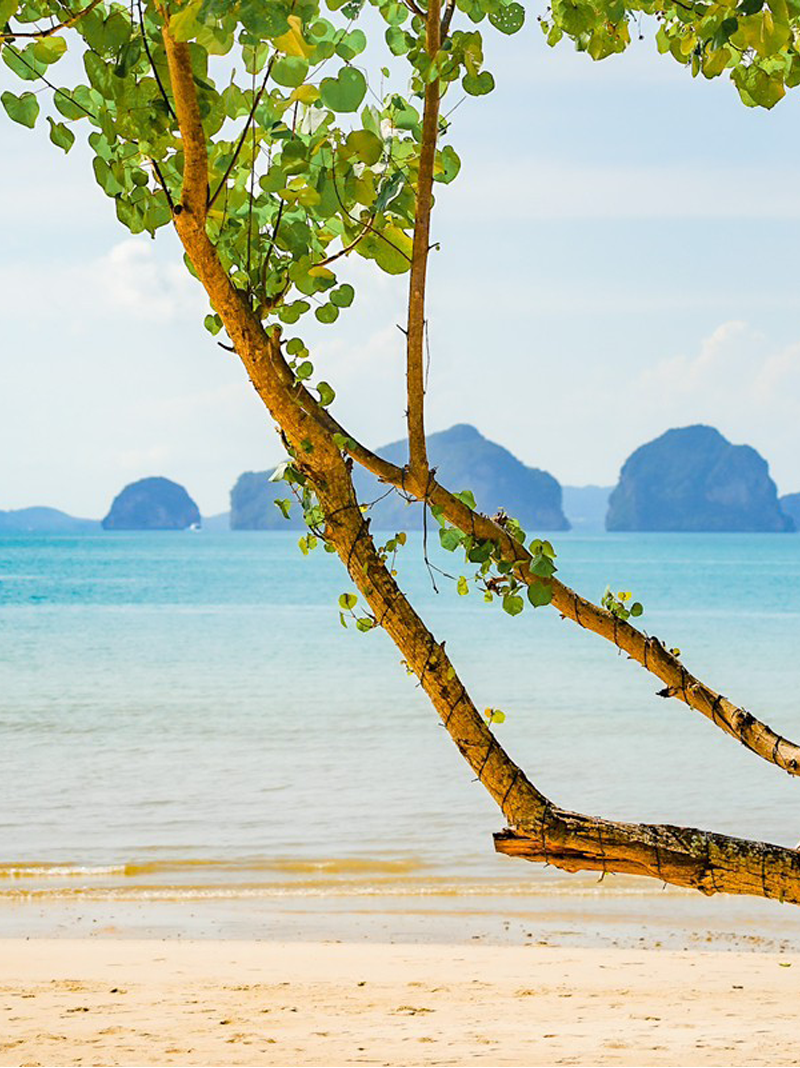 Short Break | Boutique Resort Krabi